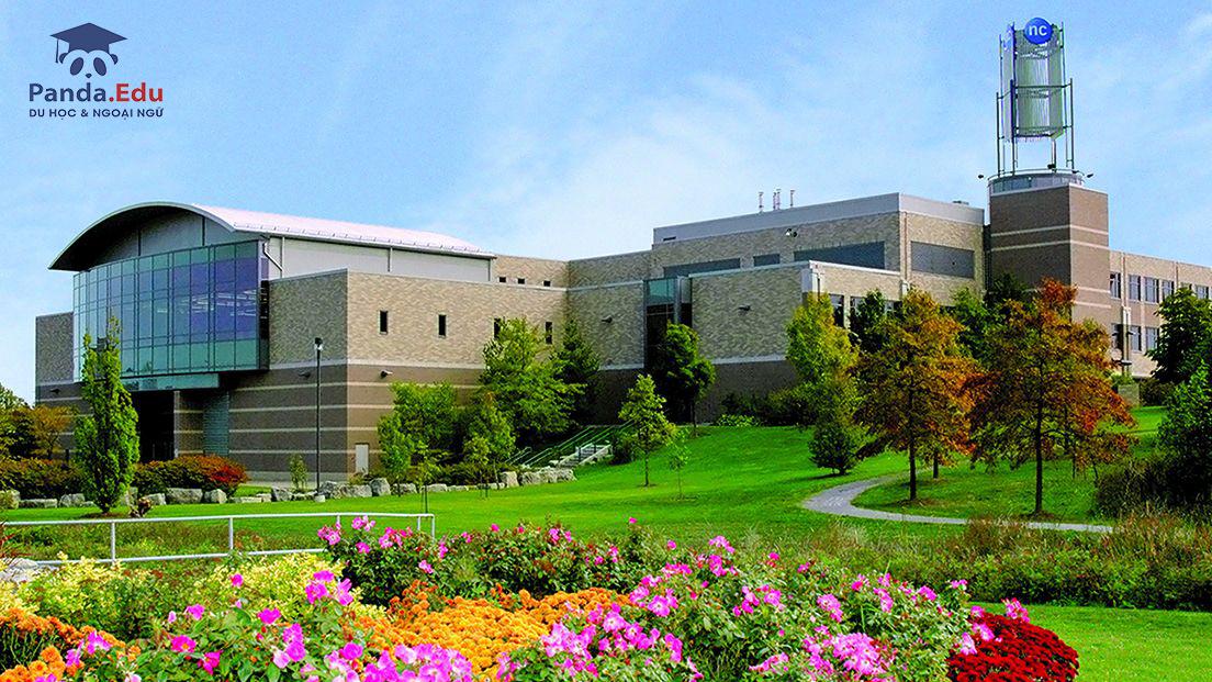 Học xá D.J.P. NIAGARA COLLEGE - CANADA  - Điểm đến du học tuyệt vời cho du học sinh